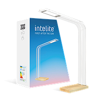 Лампа настольная светодиодная Intelite, LED светильник DL5-8W-TRL