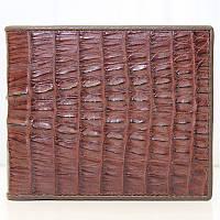 Мужской кошелёк из кожи крокодила (ALM 7T Brown), фото 1