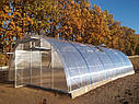 Теплица Эко Топ  6 х 30 м Стандарт 8 мм, фото 4