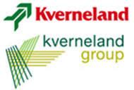 Kverneland Натяжник ланцюга AC819814