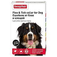 Ошейник Beaphar Flea & Tick XXL от блох и клещей для собак крупных пород, 85 см