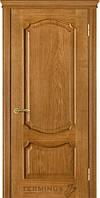 Двері міжкімнатні Термінус, модель41 Caro ПГ/ЗА