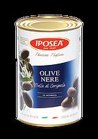 IPOSEA Olive nere Bella di Cerignola - Маслины черные с косточкой  4,1kg