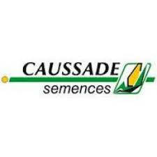 Кукуруза коссад семанс / caussade semences (франция)