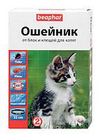 Ошейник Beaphar от блох и клещей для котят c 6 месяцев, 35 см