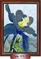 Схема для вышивки бисером «Голубой ирис»