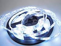 Светодиодная лента SMD 5050-30 RGB премиум серия IP65 в силиконе