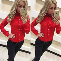 Женская модная рубашка на пуговичках (2 цвета)