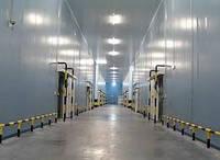 Строительство холодильных и морозильных складов