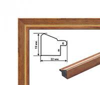 Рамка из багета (С)2219-206
