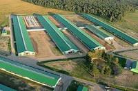 Строительство животноводческих комплексов в Днепре