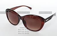 Coach №1 Солнцезащитные очки
