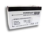 Свинцово-кислотный аккумулятор Bossman 6FM12 (12V 12AH)