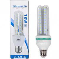 Лампа LED 12W прозрачная, холодный 175*50мм