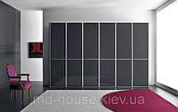 Шкаф-купе черный в гостиную Модерн, фото 1