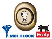 Броненакладка  ESETY by MUL-T-LOCK® A615