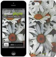 """Чехол на iPhone 5c Ромашки v2 """"2699c-23"""""""