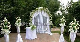 Прокат арки для бракосочетания