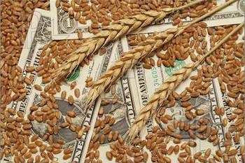 Суд поставил точку в многомиллионном деле о зерне для Аграрного фонда