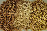 Чем заменить соевый шрот в кормах: советы аграриям