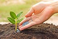 Украинские аграрии представили альтернативу российским удобрениям