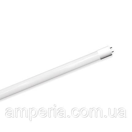 EUROLAMP LED ЛАМПА T8 24W 6500K (СТЕКЛО) (LED-T8-24W/6500(скло)), фото 2