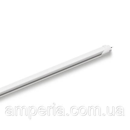 EUROLAMP LED Лампа T8 18W 6500K (LED-T8-18W/6500), фото 2