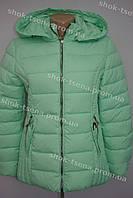 Демисезонная женская куртка салатовая