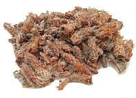 Сосновые почки 100 грамм (Gemma Pinus sylvestris)