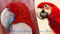 Головной убор Попугай