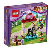 LEGO® Friends КУПАНИЕ ЖЕРЕБЕНКА В КОНЮШНЕ 41123