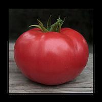 Семена томата индетерминантного Кибо F1, (KS 222) 1шт, Kitano (Китано) Япония