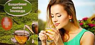 Чарівні листя Таїланду - напій для здоров'я й довголіття, фото 1