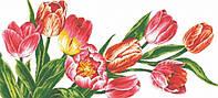 """Алмазная живопись """"Красота тюльпанов"""""""