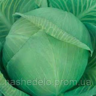 Семена капусты б/к Ярославна 0,5 кг. Коуел (Хортус)