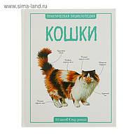 Кошки. Практическая энциклопедия.