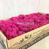 Стабилизированный мох в коробке (розовый)