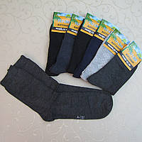 Носки мужские, Житомир, 42-48 р-р .  Носки классические, практичные  носки для мужчин, фото 1