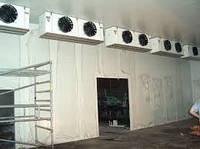 Реконструкция холодильных камер из действующего объекта