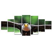 Модульные Светящиеся картины Startonight Американский орел, 7 частей