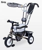 Детский трехколесный велосипед Caretero Derby Grey