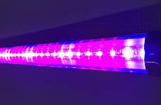Світлодіодний фітосвітильник Т8-2835-0.6 FS 9W IP20 лінійний (fito spectrum led) Код.58831, фото 2