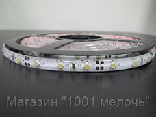 Лента светодиодная 300 SMD3528 - 5 метров в Силиконе, фото 3