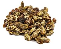 Софора японская плоды 100 грамм (Sophora japonica)