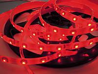 Светодиодная лента стандарт 2835-60 5-6 Лм IP65 в силиконе Красный