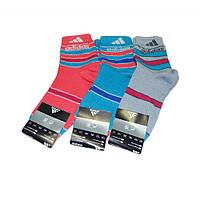 Большой выбор носков для всей семьи