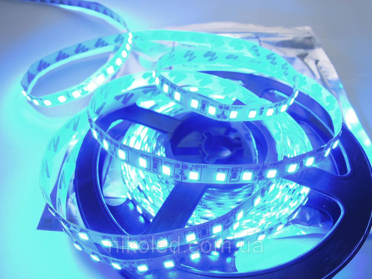 Светодиодная лента стандарт 2835-120 5 Лм Синий