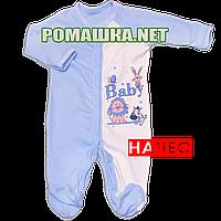 Человечек для новорожденного р. 80-86 с начесом ткань ФУТЕР 100% хлопок ТМ Алекс 3042 Голубой3 80