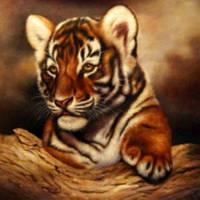 Набор для рисования по номерам Тигрюля VD017