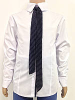 Блузка шкільна біла для дівчинки батист